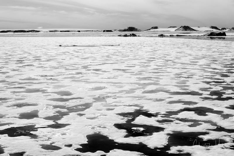 Champ Island Sea Ice.jpg