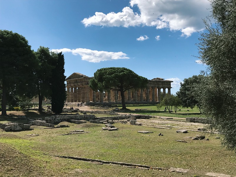 Visit ancient Greek Temples in Paestum on a day trip from Salerno, Italy.