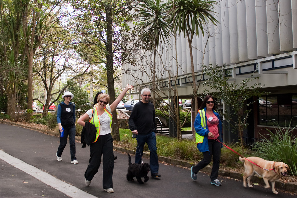 THP Hike_075-1 The Hunger Project Hike4Hunger<br /> Sally Pilkington, Sally Liggins, unknown, Lyn Boric at near Symonds St