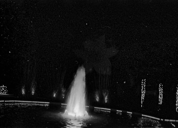 2010 Daniel Stowe Botanical Garden in Black and White