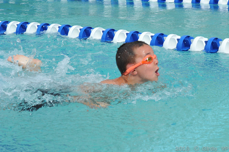 2015-06-20_HAC_SwimMeet_v_Westminster@HAC_HockessinDE_117.jpg