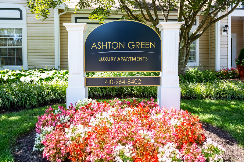 2018-08-23-Ashton-2048-8.jpg