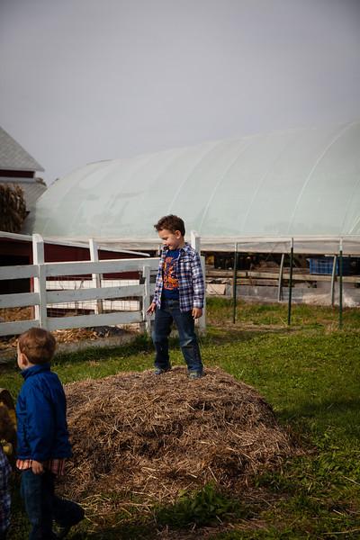 Fulton Farms  (71 of 77).jpg