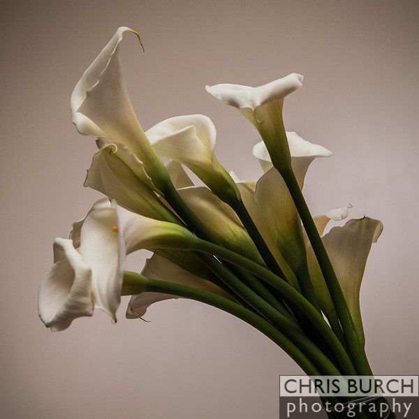 Burch - Wedding-169.jpg