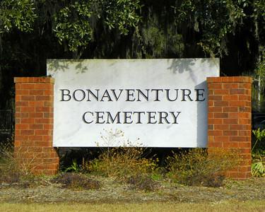 Bonaventure - Savannah