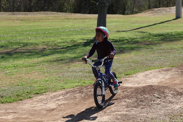 Bike on Pump Track 2016