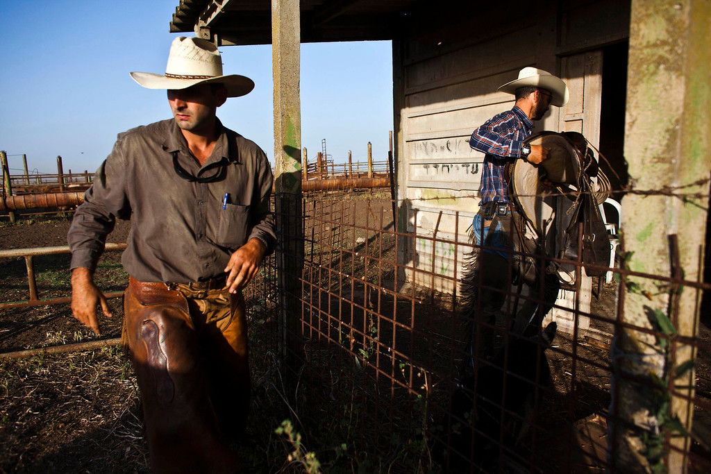 . Israeli cowboys, Alon (R) and Amit (L), unload their horses after working with cattle in the early morning on a ranch just outside Moshav Yonatan, a collective farming community, about 2 km (1 mile) south of the ceasefire line between Israel and Syria in the Golan Heights May 21, 2013.  REUTERS/Nir Elias