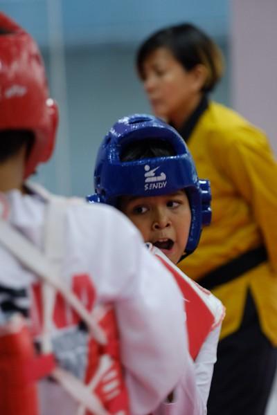 INA Taekwondo Academy 181016 111.jpg