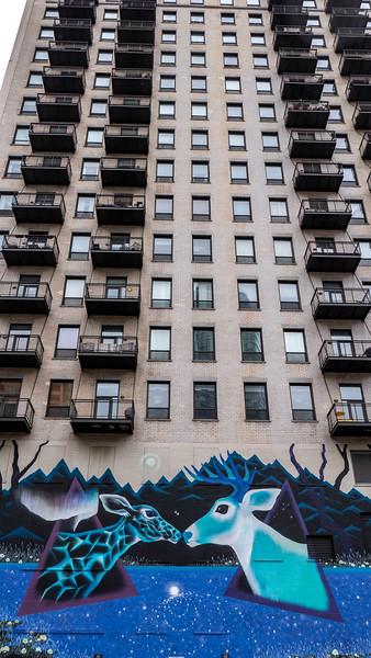 Chicago-StreetArt43.jpg