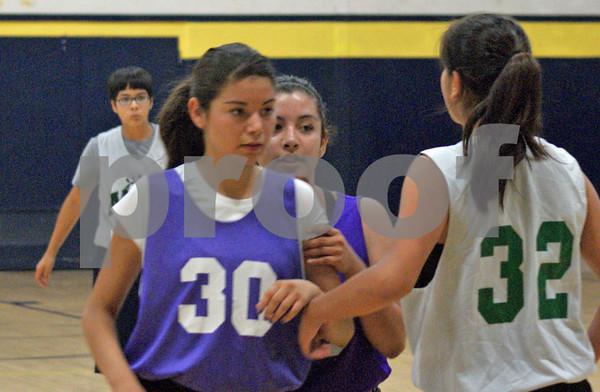 2012 Flowing Wells Summer basketball