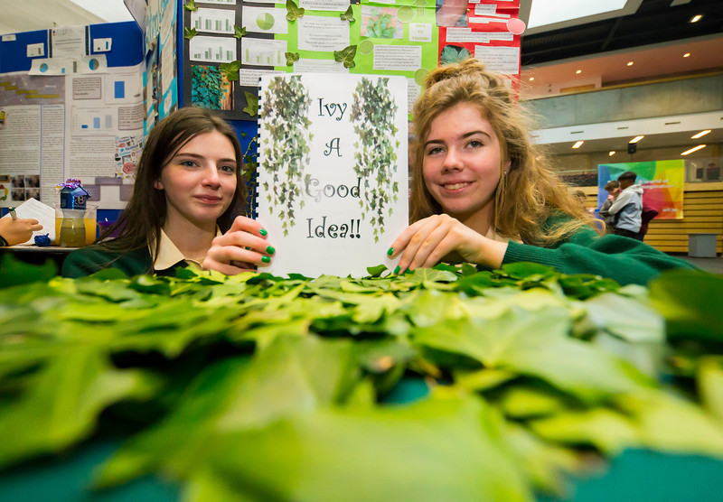 "01/05/2018. SciFest at WIT (Waterford Institute of Technology) at the Arena. Pictured are Aisling O'Brien and Theresa Kehoe from St. Marys Secondary School, New Ross with their project ""Ivy A Good Idea""  Picture: Patrick Browne"