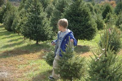10-29-05 Christmas Tree Tagging