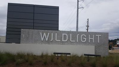 Wildlight - January 2020