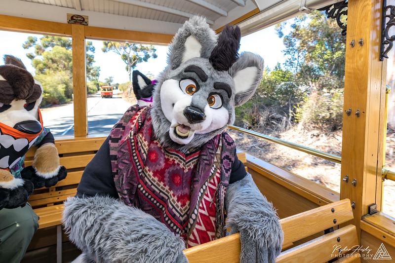 SB Trolley Meet 2019-10-05-028.jpg