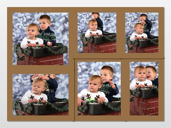Curley's Grandchildren
