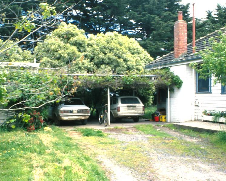 Family cars at home.jpg