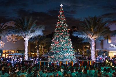 20131123 Dos Lagos - Christmas Tree Lighting