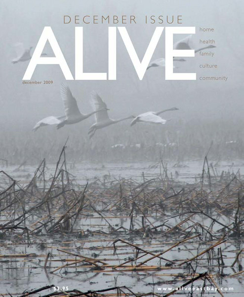 ALIVE_Cover_Final_1209.qxd