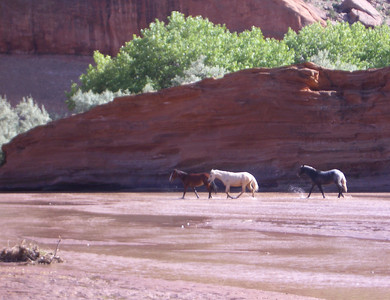 Arizona: Canyon de Chelly