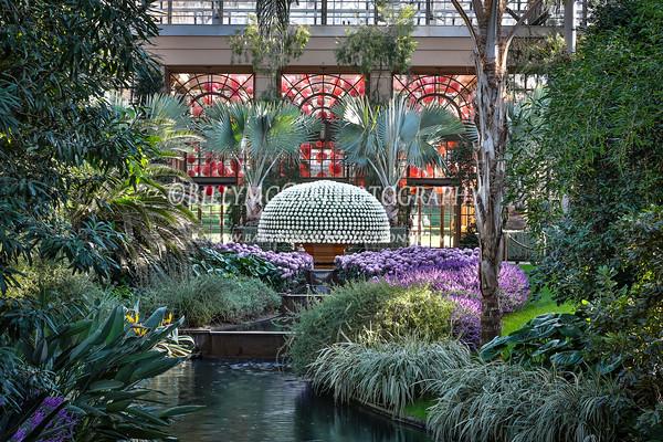Longwood Gardens - 11 Nov 2012