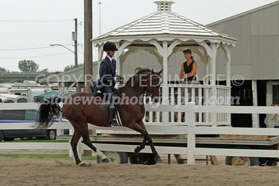 Saddle Seat 2013