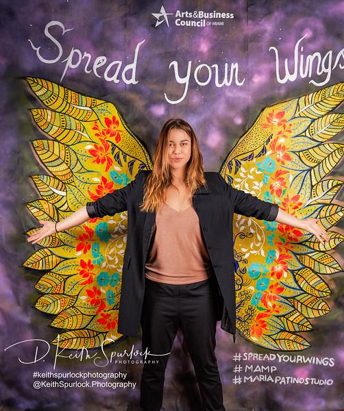 DS904928 MAMP2019-Wings.jpg