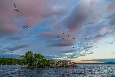 Skeleton Lake - Island Shots