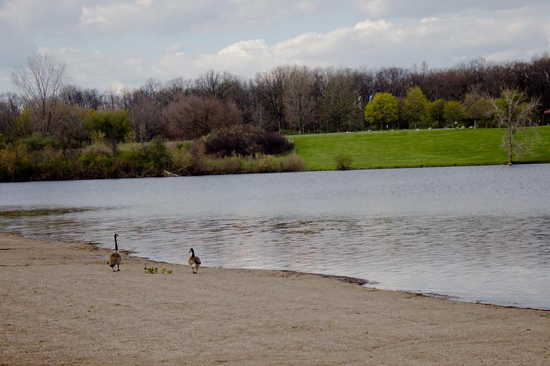 Seven Lakes Michigan State Park 16