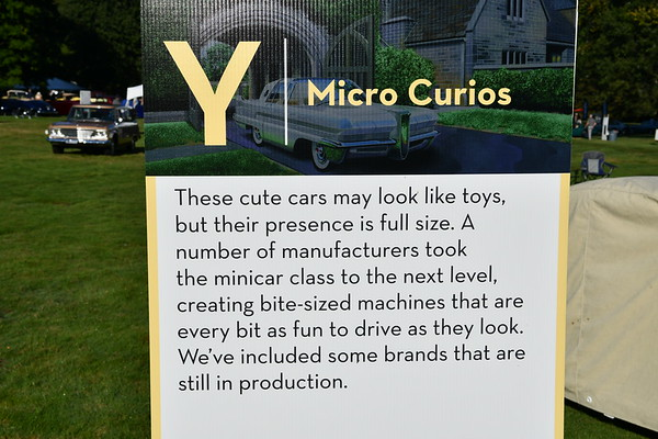 Micro Curios