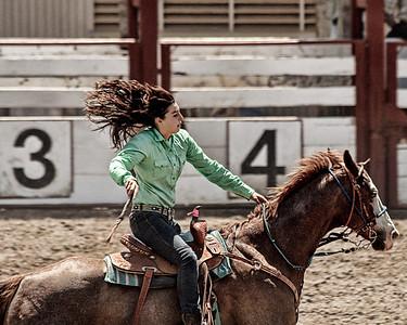 2009 San Benito County Saddle Horse Show