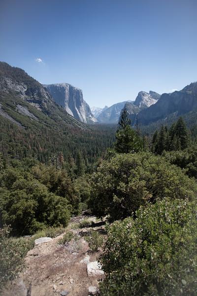 Yosemite_2016_Park-23.jpg