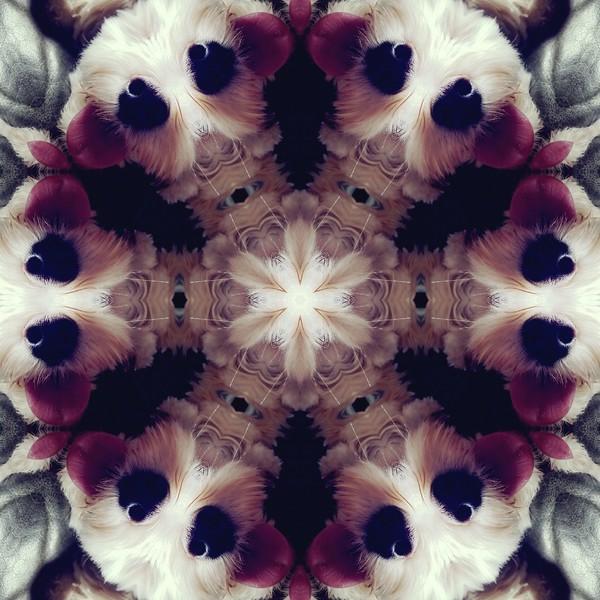 image%3A60744_mirror.jpg
