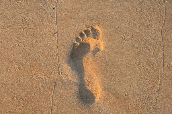 footprint_sbeckman_2_20141019_1618729968.jpg
