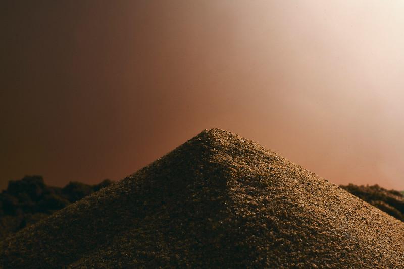 2020-12-05 Jaybird Sand Still Life4434.jpg