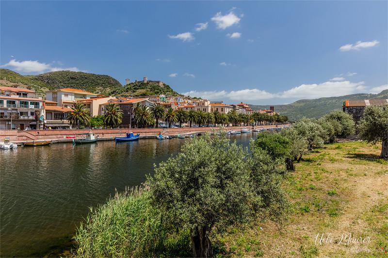 Sardinien 2016-05-18 -0U5A0754.jpg