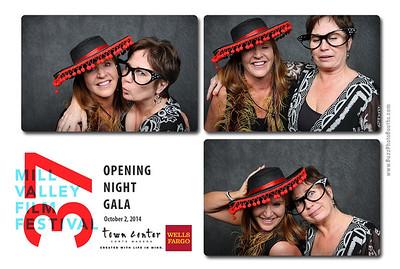 2014 Mill Valley Film Festival