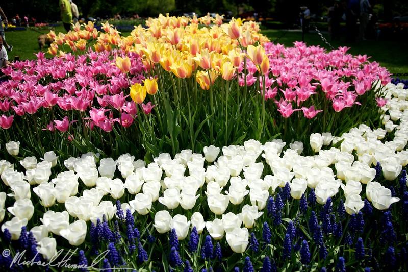 2010-05-01 at 14-16-58.jpg
