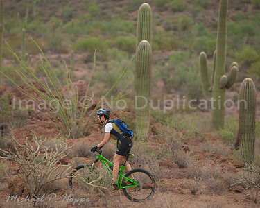Sweetwater Mountain biking - Tucson