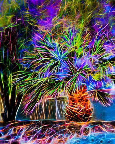 Safari Cactus.jpg