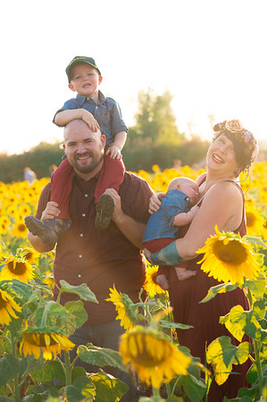 Keleman's in the sunflowers