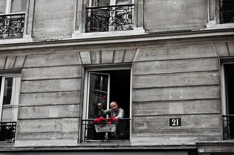 I was walking on the streets of Paris when I noticed this man tending to his roses.  I waved at him and he was very friendly and waved back to me.