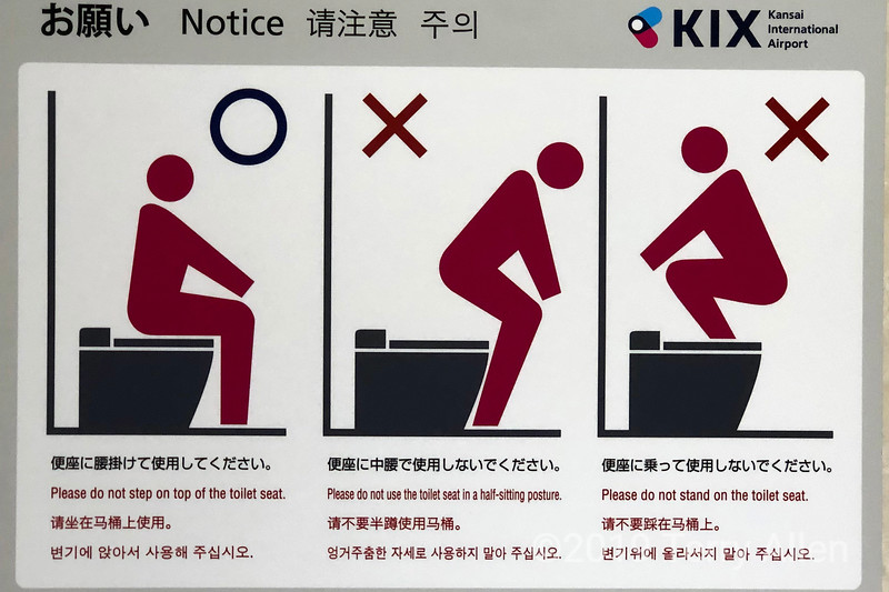 How to use a toilet