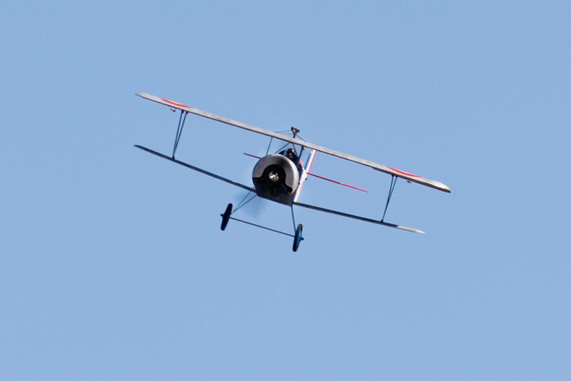 GP_Nieuport11_029.jpg