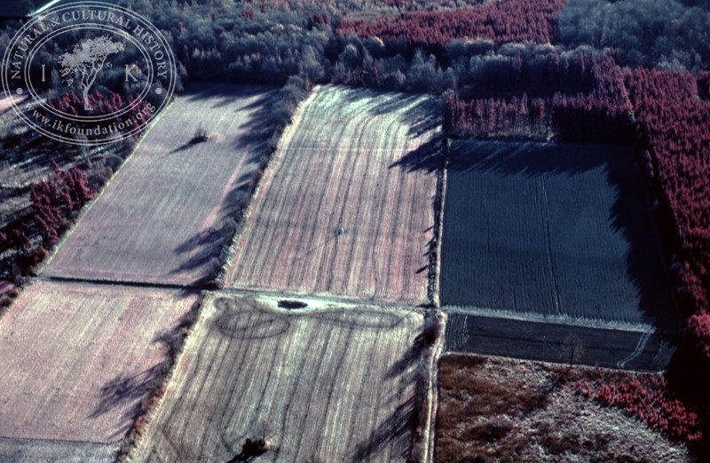 Landscape with agriculture and forestry in the area between Eljaröd, Brösarp and Andrarum. Experimentally photographed with infrared film and Kodak Wratten gelatin filter No: 12 & 25 (2 April, 1989). | LH.0354