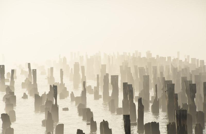 Foggy Chelsea Piers