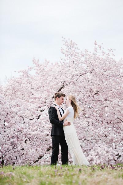 Cherry Blossoms (47 of 182).jpg