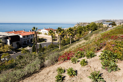 Dana Point - January 2015