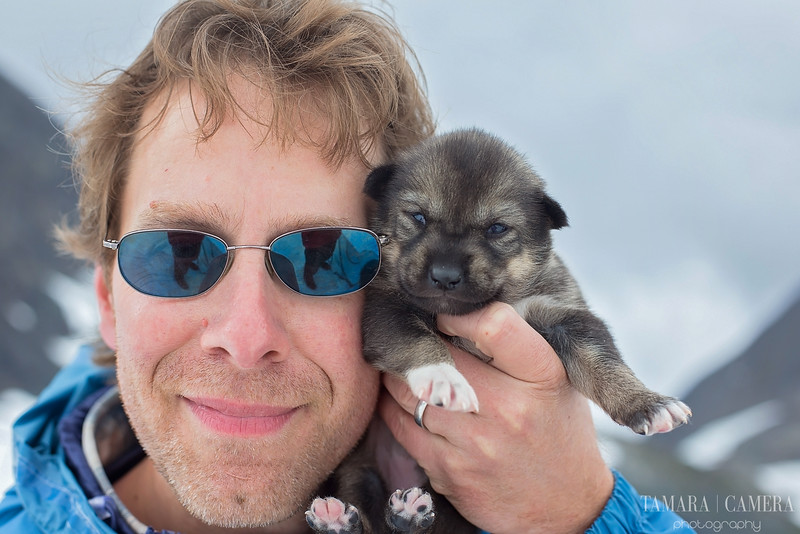 Puppies-2-2.jpg