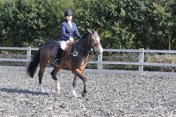TRRC Dressage (08-May-16) - Class 1 (BD Introductory A - Walk & Trot test - 2008)