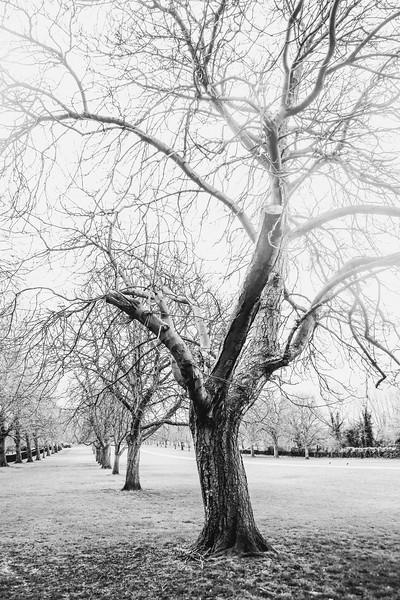© Gloss Photography Studios-101.jpg